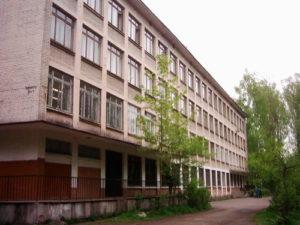 Лицей 95 Санкт-Петербурга